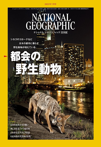 ナショナル ジオグラフィック日本版