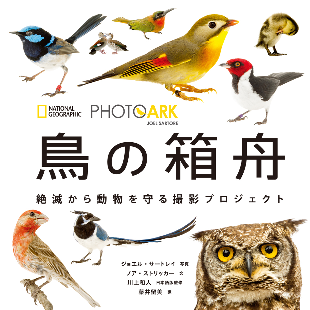 PHOTO ARK 鳥の箱舟
