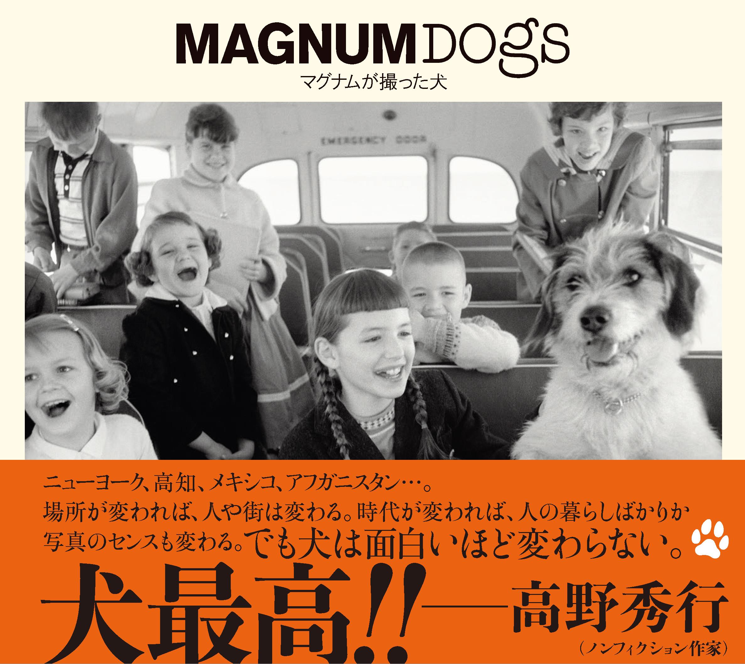 MAGNUM DOGS マグナムが撮った犬
