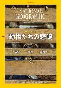 ナショナル ジオグラフィック日本版2019年6月号
